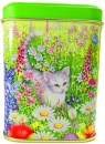 Dose cat with spring flowers